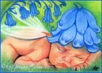 Bluebells Fairy Baby ACEO by Katerina-Art