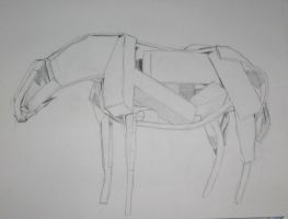 Iterations of a Horse by NoCyg