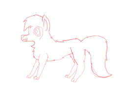 My Sketch Of A Wolf by coolmlpfangirl450