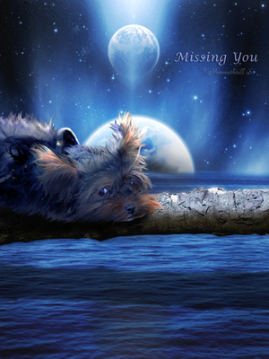 Missing You by Manwathiell