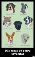 My favourite dog breeds by ViolePandora