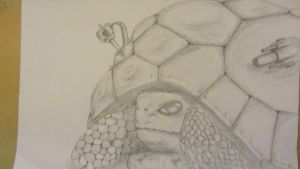 Armored Turtle by MP-DA
