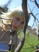 Twisted branches by Kairi-Say-Oke
