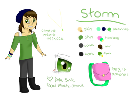 NEW New Persona Ref by stormfire87