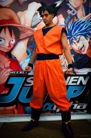 Epic stance is epic by tousen-kaname