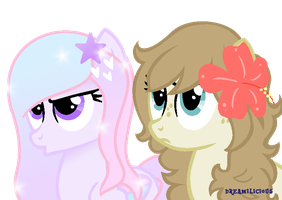 Honestly Dudes by Dreamilicious