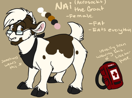 Fursona ref by AeroSocks