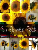 Sunflower Pack by Armathor-Stock