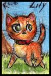 Two red cats chibi characters - Lily by FuriarossaAndMimma