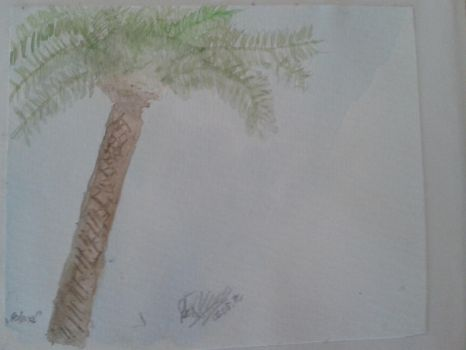 Palm by Akid4