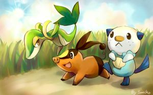 5th gen starters by sdPink