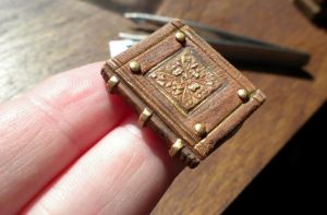 Leather bound gilded book..kinda... by Minifanaticus