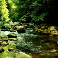 Otter Creek by TimLaSure