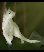 Blackstar of ShadowClan by xxMoonwish