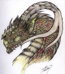 Dragon of fall Finished by Caininsin