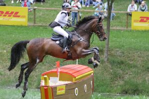 3DE Cross Country Water Obstacle Series XII/1 by LuDa-Stock