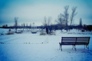 Bench in the park by kubusik