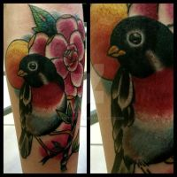 Robin tattoo traditional by thirteen7s