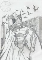 The Dark Knight by Taj-P
