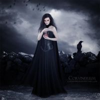 Fragments Of Your Soul by Corvinerium