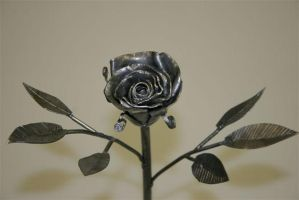 Metal Rose by metaltamer