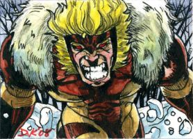 Sabretooth Sketch Card by DKuang