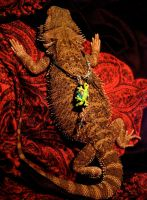 The Dragon and the Gecko 2 by Armenius