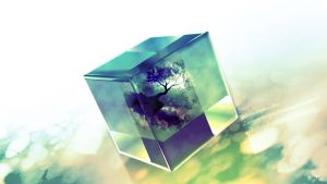 The Cube of Life by faynar