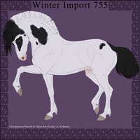 Nordanner Winter Import 755 by DemiWolfe-Stables