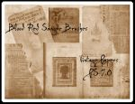Sangre's Vintage Papers by Sangre-brushes