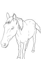Scoot Horse Lineart by Iluvbiscuit2