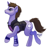Pony Hawkeye by MegSyv