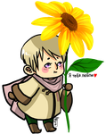 APH: CUTIE 5EVER by Lil-Wang