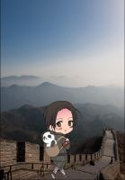 Hetalia - China's Long Trip by PucchiPuchi