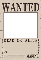 One Piece Wanted Poster Preset by Akuma-no-mi-bu