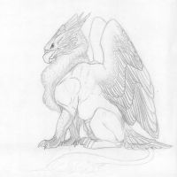 Gryphon sketch by lapis-lazuri