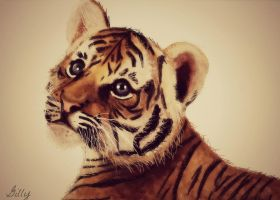 Tiger cub by gilly15