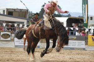 Taupo Rodeo 105 by Sooty-Bunnie