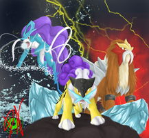 3 legendary beast by DemonNagareboshi