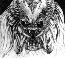 Predator.. unfinished by Dream-of-This