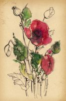 Poppies Monotype by LadyInBlack89