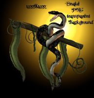 Stock Snake PNG by Twins72