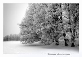 Dream About Winter... by Erni009