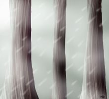 Forgotten Forest by LikelyLupine