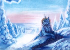 Winter's sun by Lhuin