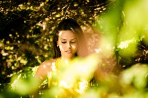 through the bushes by michaelbarbosa