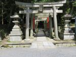 The Torii of Tofukuji (HiRes) by Zerro