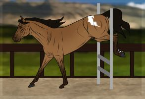 He Might Make  Jumper Yet. by WB-Equine-Art