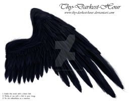 Soft Compact Wing - Black by Thy-Darkest-Hour
