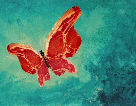 Raw Butterfly by offermoord